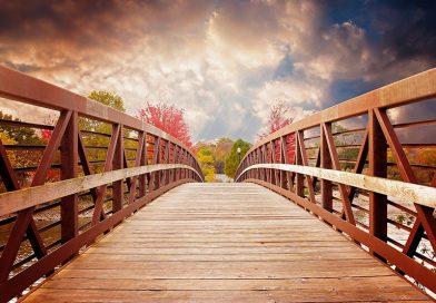 直通车架起信任的桥梁